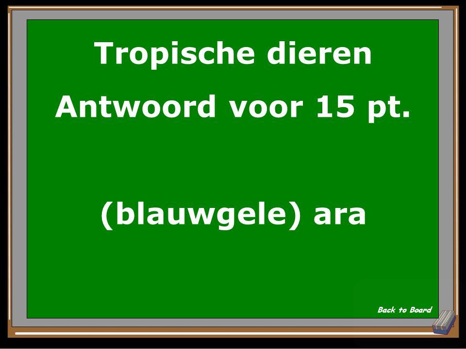 Tropische dieren Antwoord voor 15 pt. (blauwgele) ara