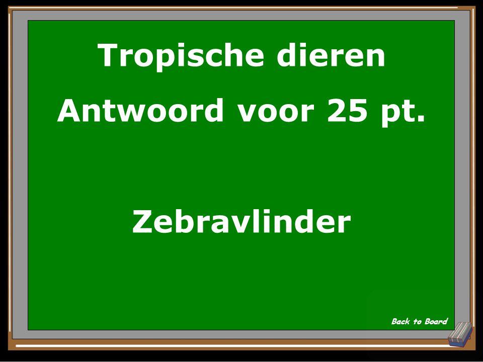 Tropische dieren Antwoord voor 25 pt. Zebravlinder