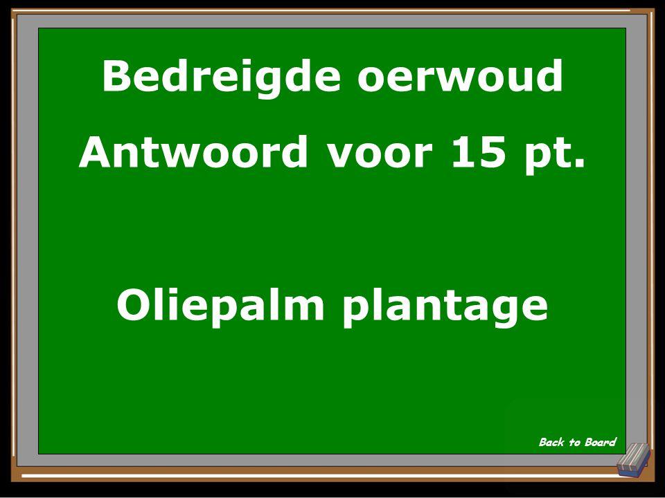 Bedreigde oerwoud Antwoord voor 15 pt. Oliepalm plantage