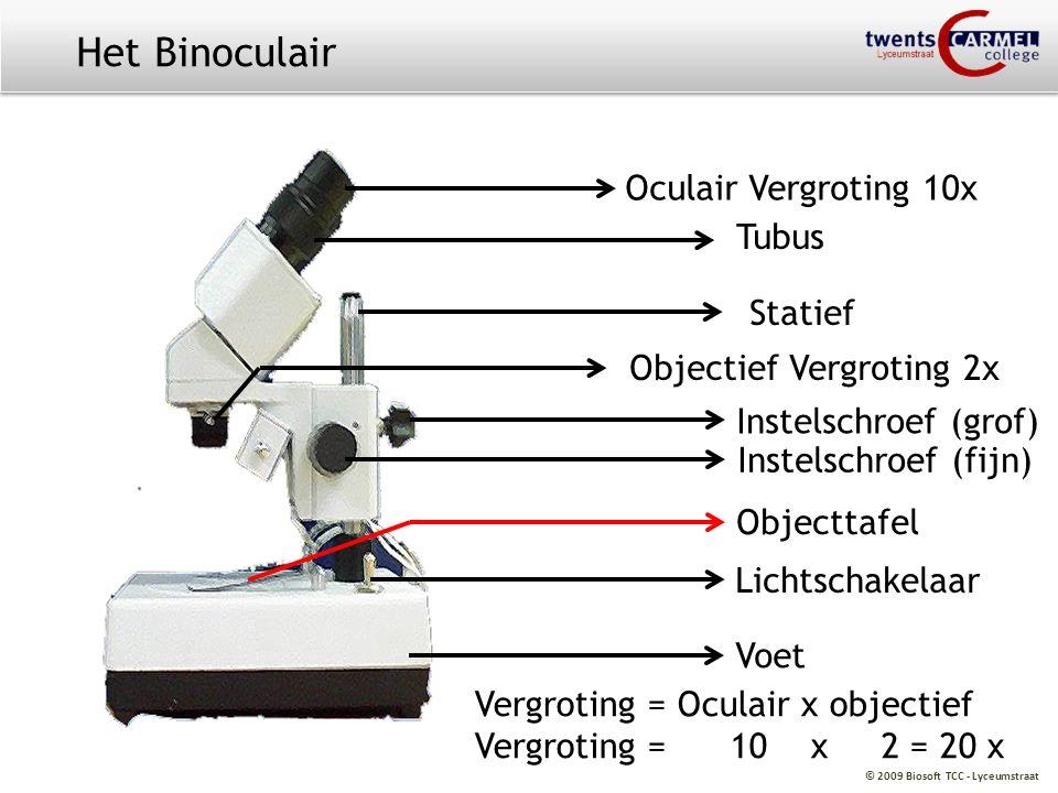 Het Binoculair Oculair Vergroting 10x Tubus Statief