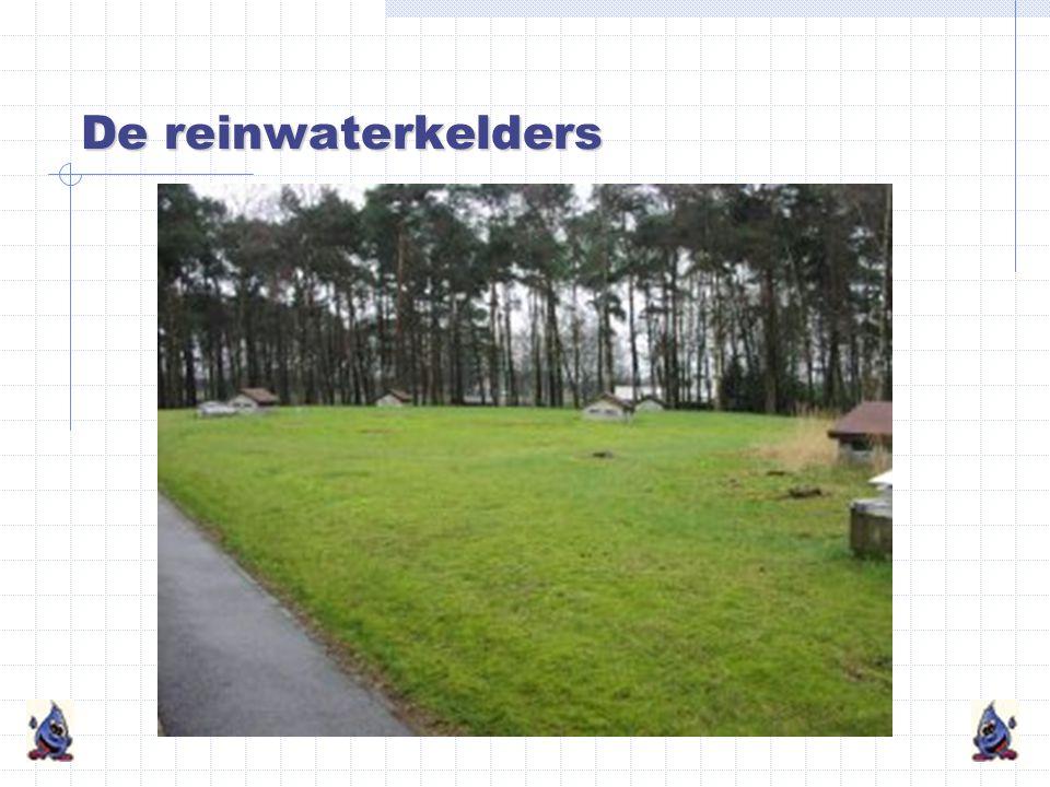 De reinwaterkelders
