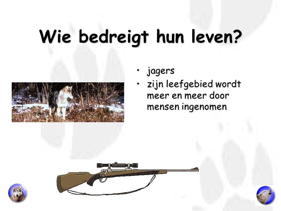 Wie bedreigt hun leven jagers