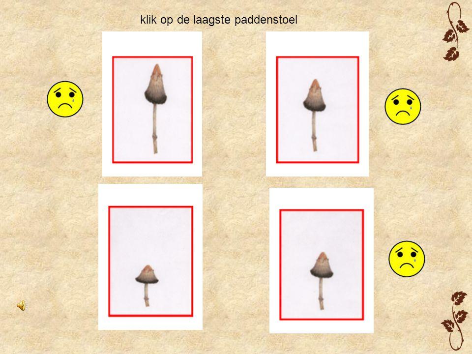 klik op de laagste paddenstoel