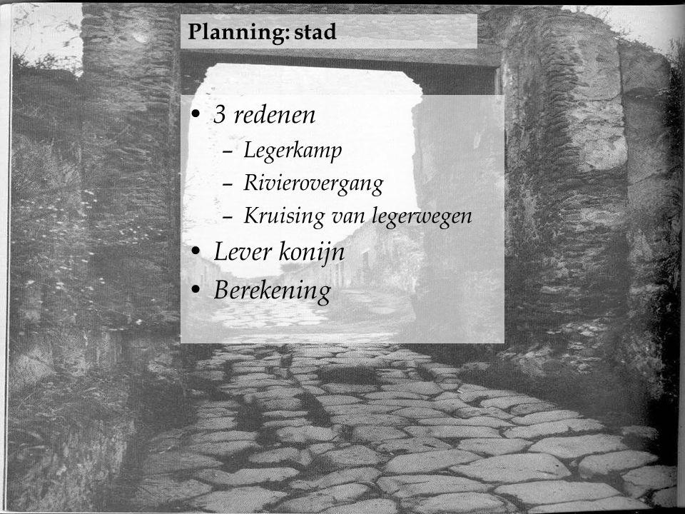 3 redenen Lever konijn Berekening Planning: stad Legerkamp