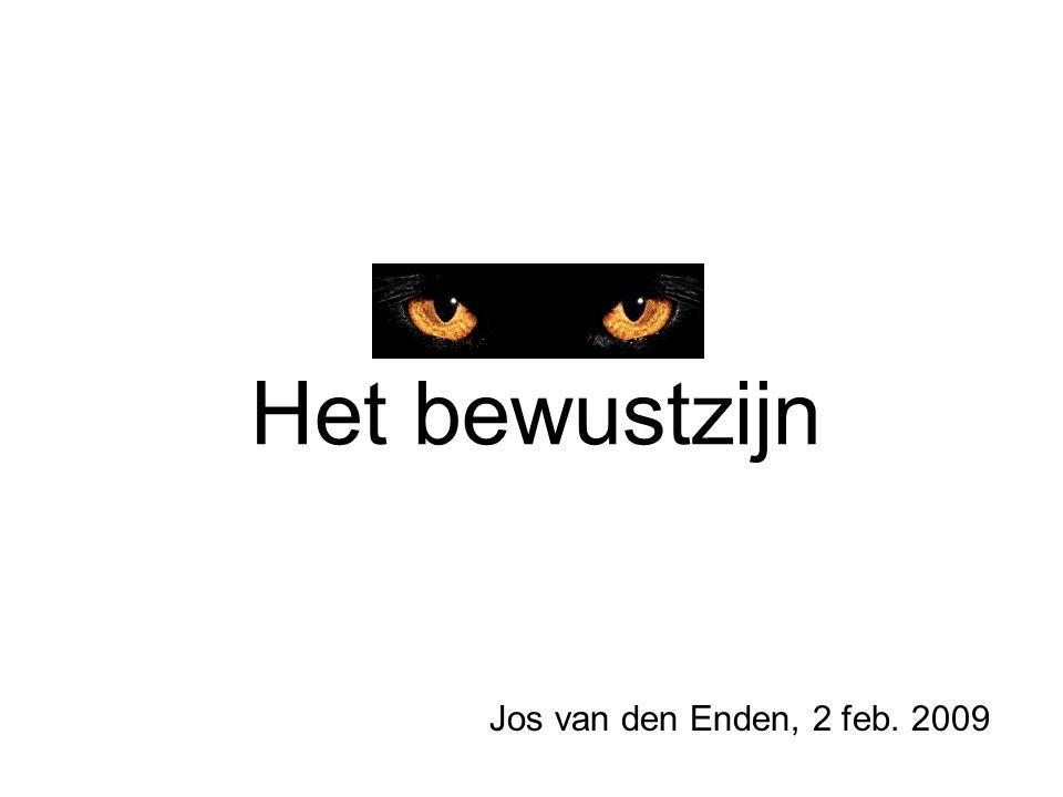 Het bewustzijn Jos van den Enden, 2 feb. 2009