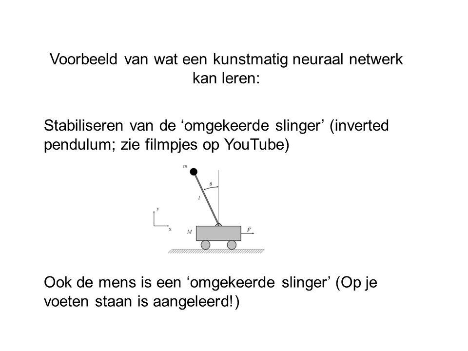 Voorbeeld van wat een kunstmatig neuraal netwerk kan leren: