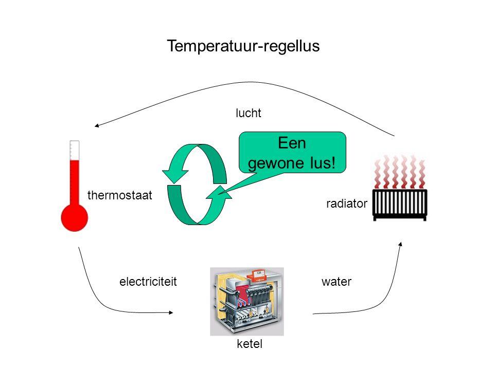 Temperatuur-regellus