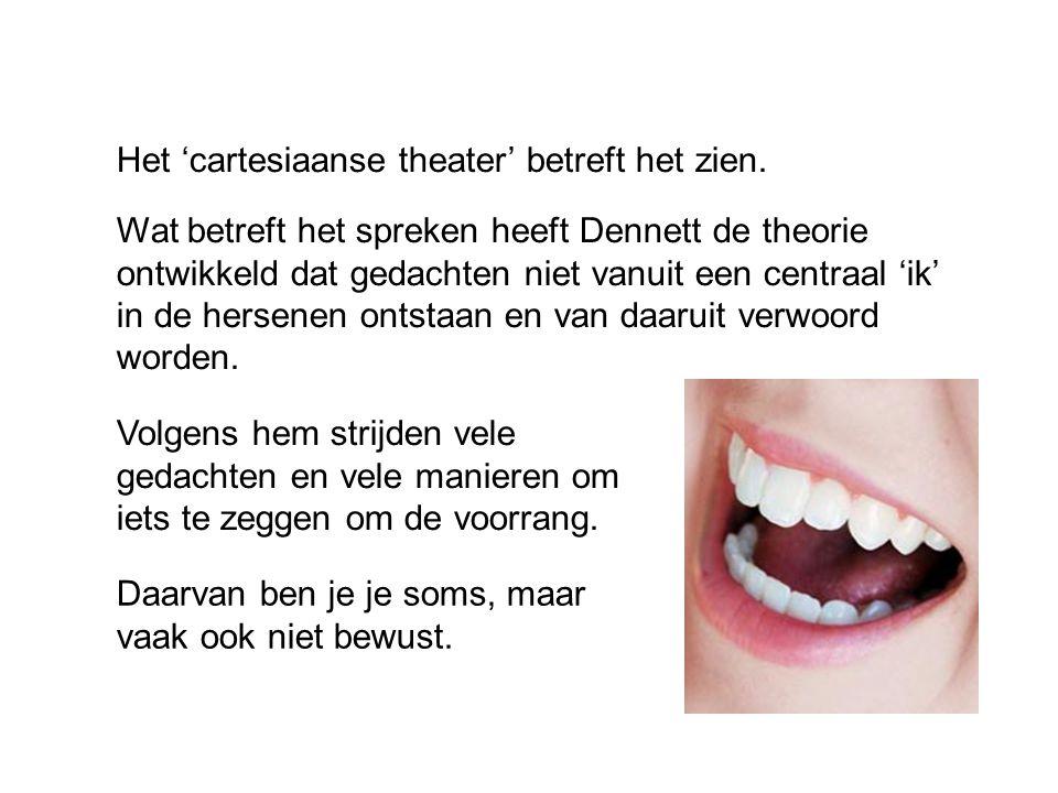 Het 'cartesiaanse theater' betreft het zien.