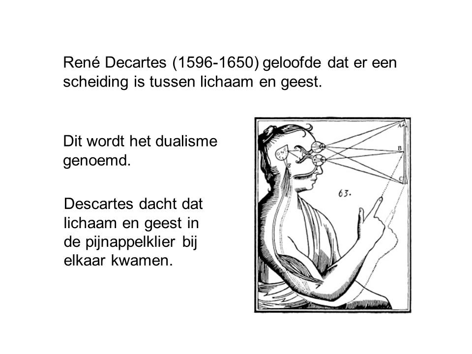 René Decartes (1596-1650) geloofde dat er een scheiding is tussen lichaam en geest.