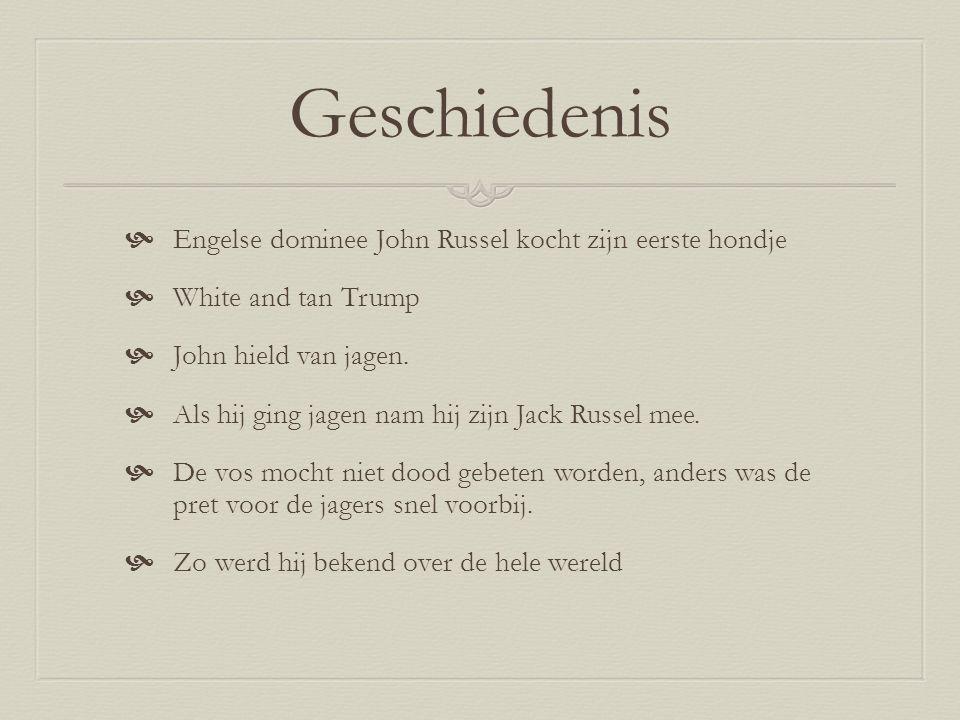 Geschiedenis Engelse dominee John Russel kocht zijn eerste hondje