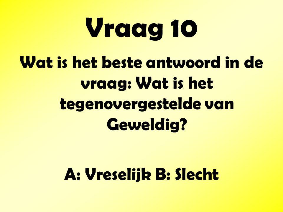 Vraag 10 Wat is het beste antwoord in de vraag: Wat is het tegenovergestelde van Geweldig.