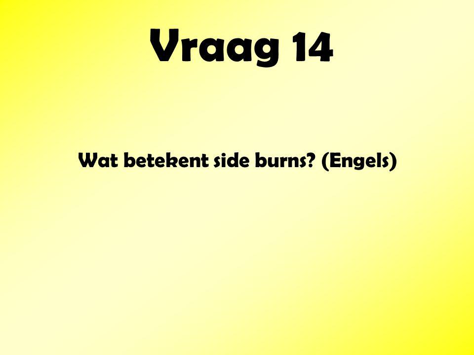 Wat betekent side burns (Engels)