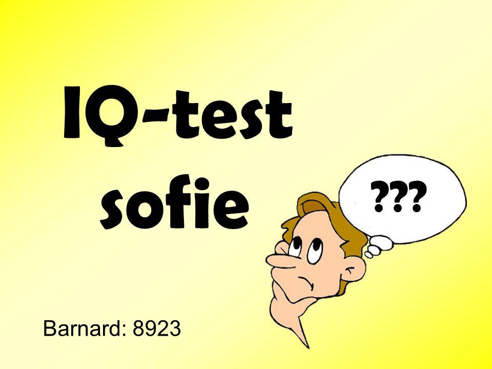 IQ-test sofie Barnard: 8923
