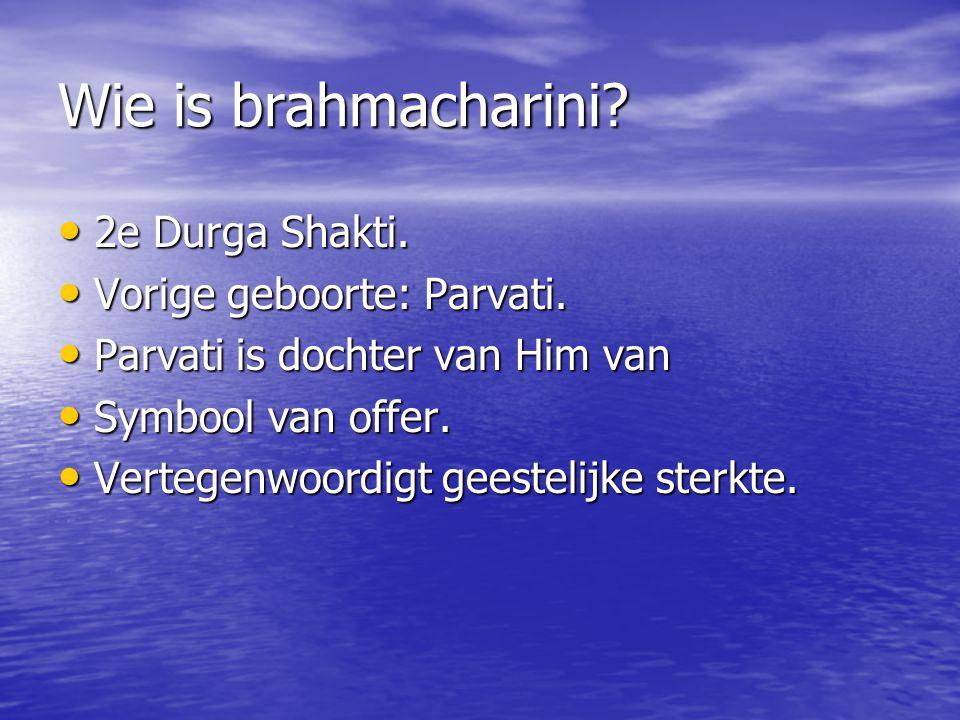 Wie is brahmacharini 2e Durga Shakti. Vorige geboorte: Parvati.
