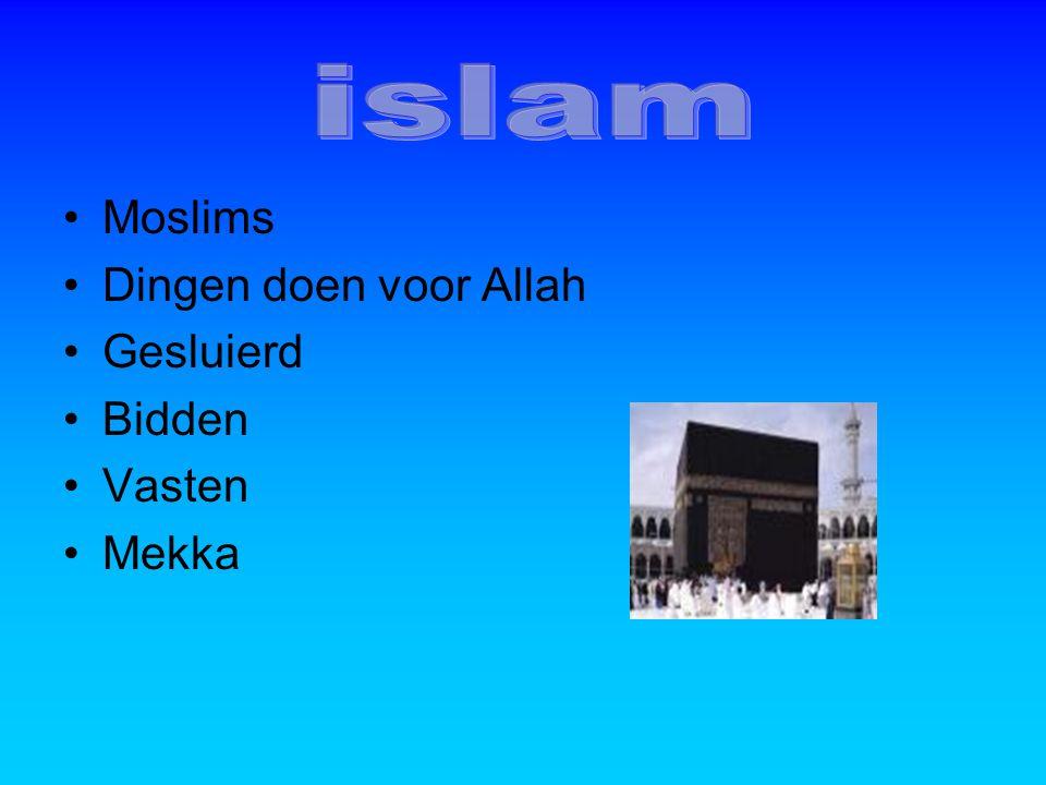 islam Moslims Dingen doen voor Allah Gesluierd Bidden Vasten Mekka