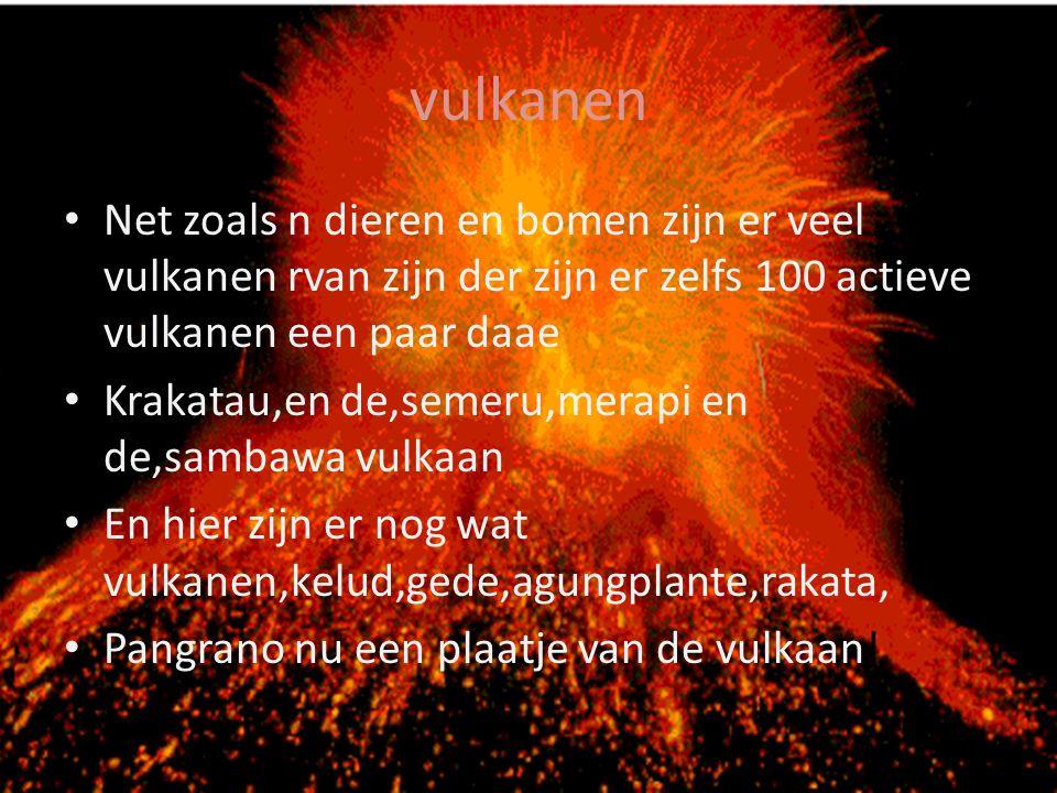 vulkanen Net zoals n dieren en bomen zijn er veel vulkanen rvan zijn der zijn er zelfs 100 actieve vulkanen een paar daae.