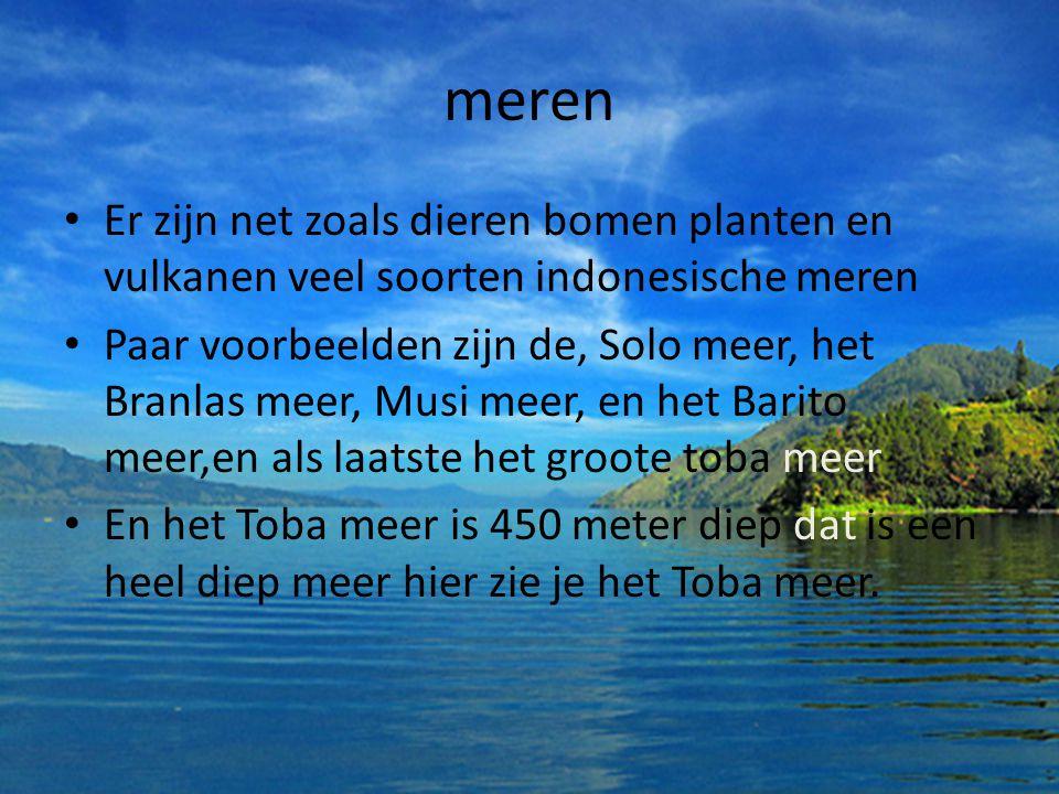 meren Er zijn net zoals dieren bomen planten en vulkanen veel soorten indonesische meren.