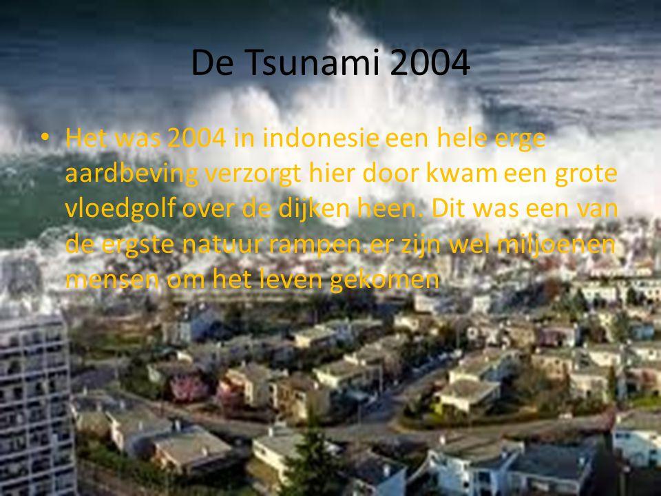 De Tsunami 2004