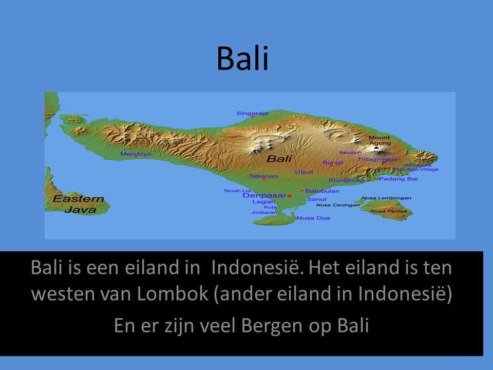 En er zijn veel Bergen op Bali