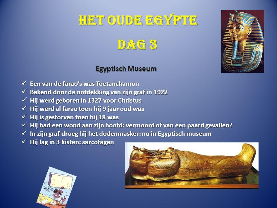 Het oude Egypte Dag 3 Egyptisch Museum
