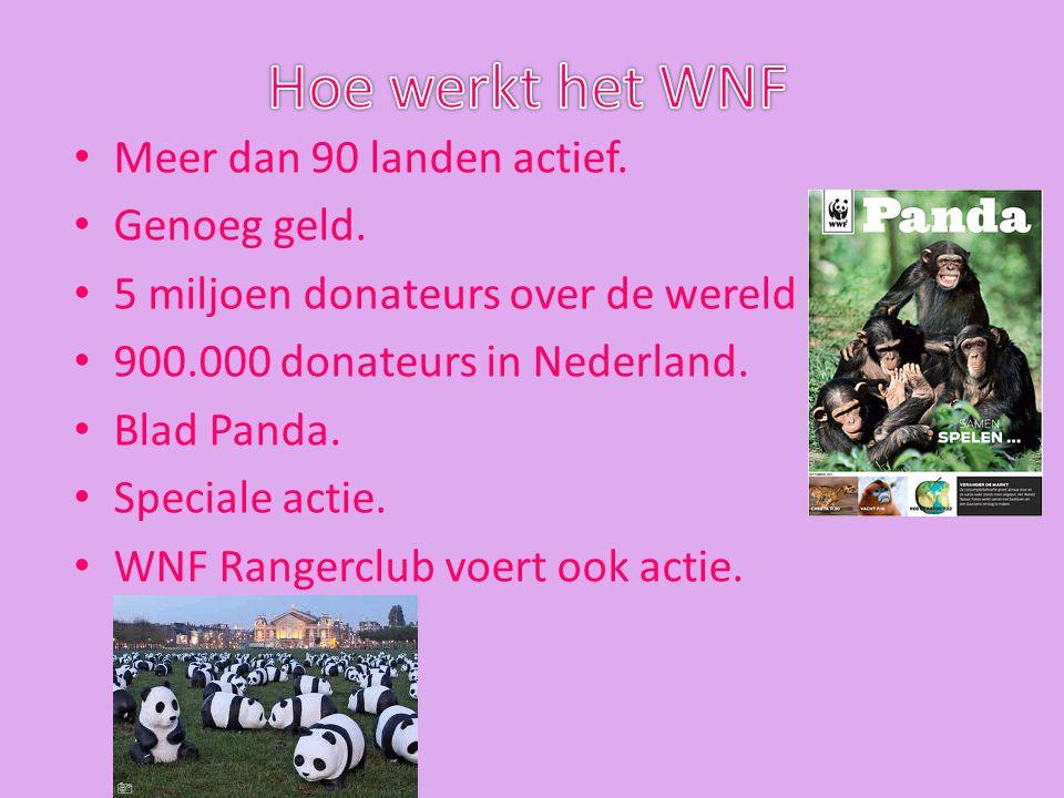 Hoe werkt het WNF Meer dan 90 landen actief. Genoeg geld.