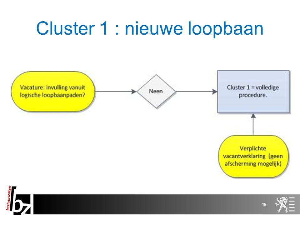 Cluster 1 : nieuwe loopbaan