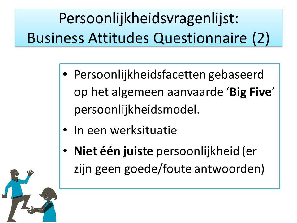 Persoonlijkheidsvragenlijst: Business Attitudes Questionnaire (2)