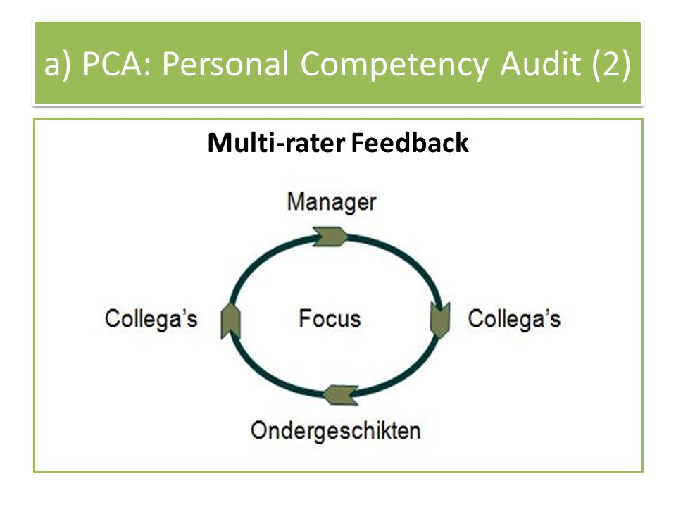 a) PCA: Personal Competency Audit (2)