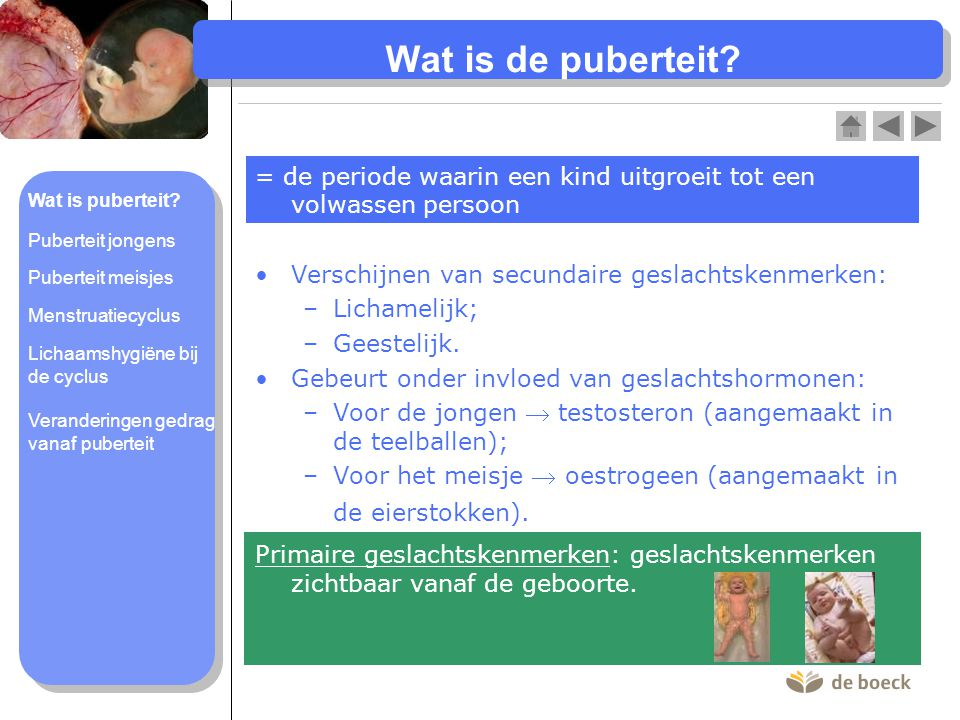Wat is de puberteit = de periode waarin een kind uitgroeit tot een volwassen persoon. Wat is puberteit