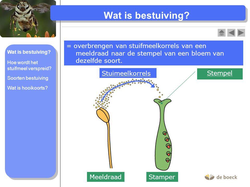 Wat is bestuiving = overbrengen van stuifmeelkorrels van een meeldraad naar de stempel van een bloem van dezelfde soort.