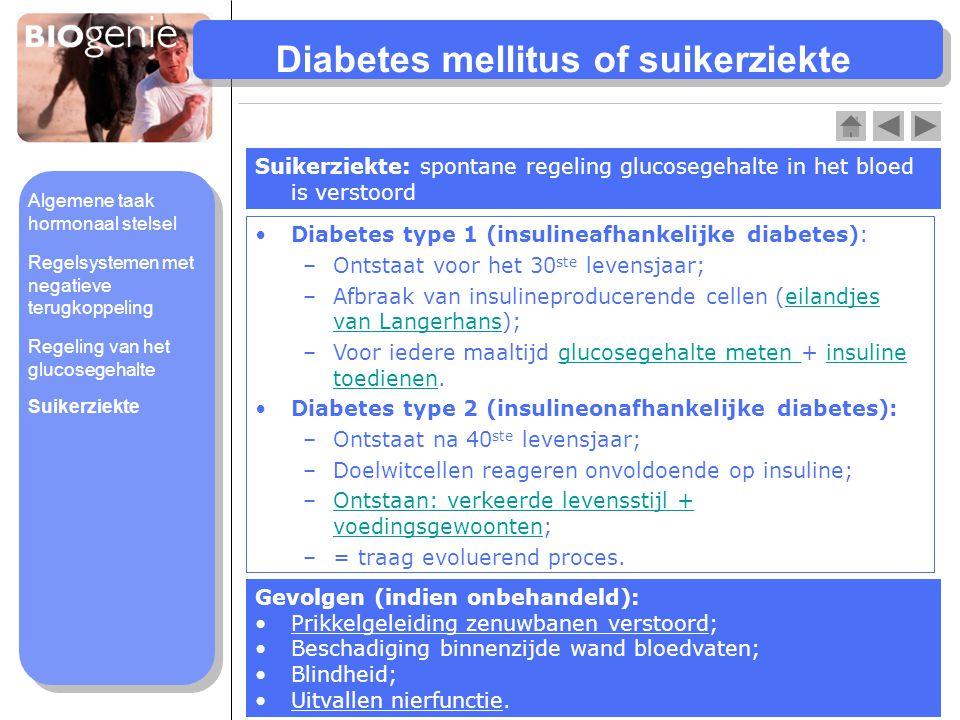 Diabetes mellitus of suikerziekte