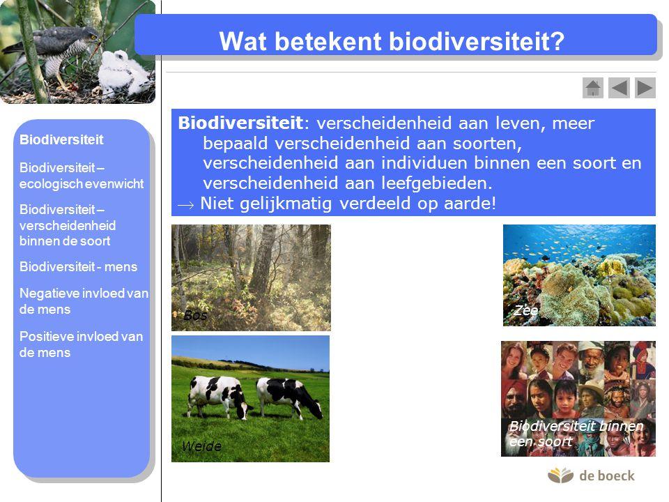 Wat betekent biodiversiteit