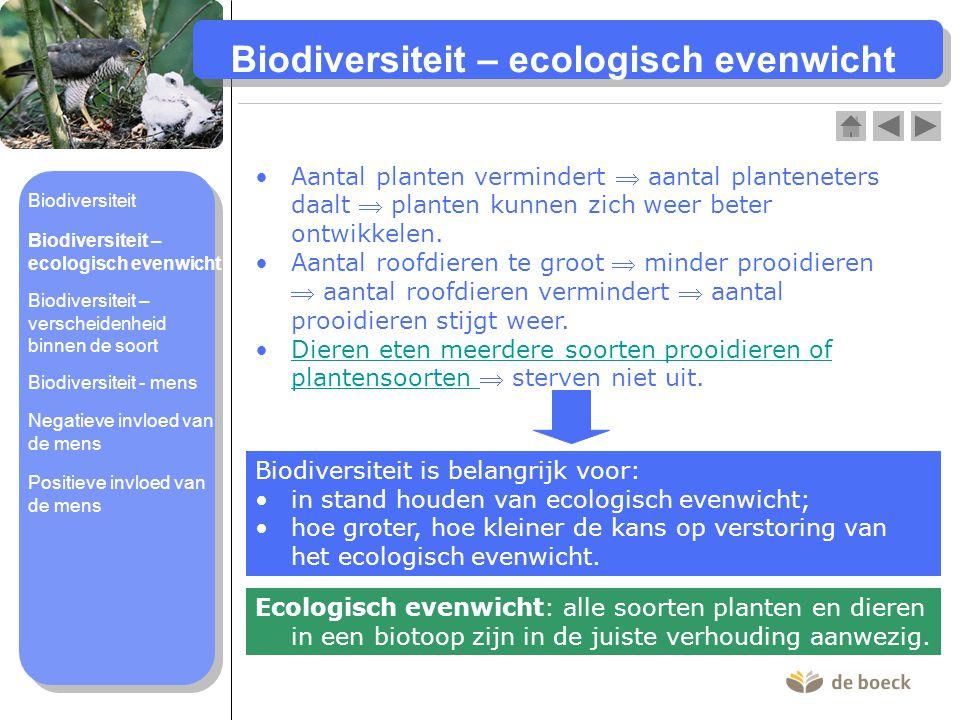 Biodiversiteit – ecologisch evenwicht
