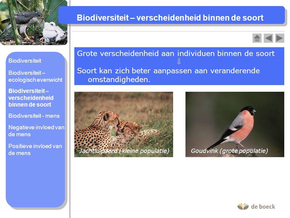 Biodiversiteit – verscheidenheid binnen de soort