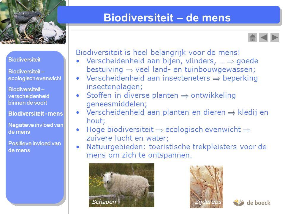 Biodiversiteit – de mens