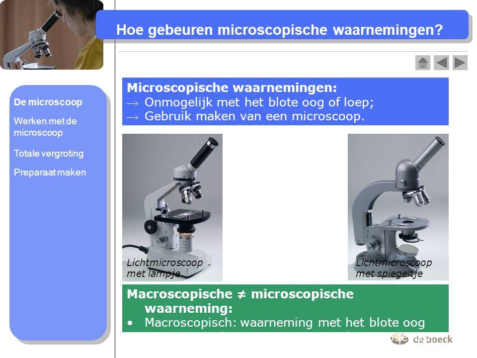 Hoe gebeuren microscopische waarnemingen