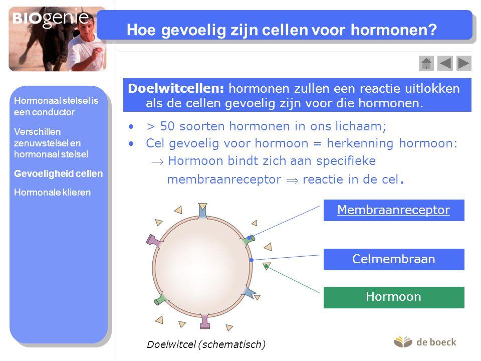 Hoe gevoelig zijn cellen voor hormonen