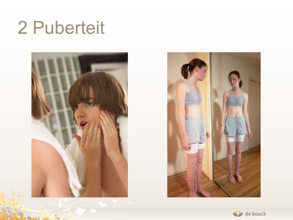 2 Puberteit