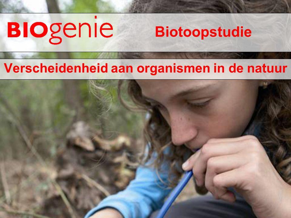 Verscheidenheid aan organismen in de natuur