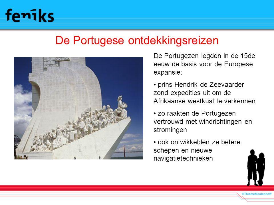 De Portugese ontdekkingsreizen