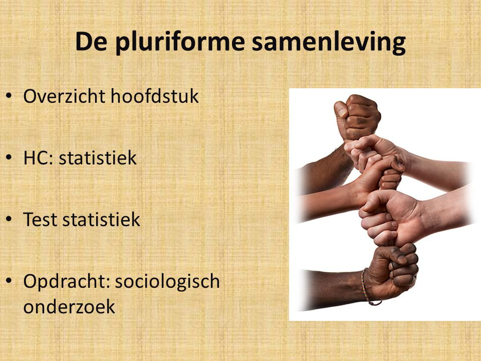 De pluriforme samenleving
