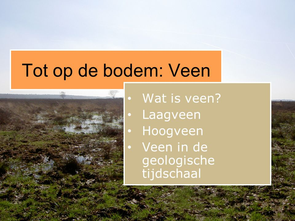 Wat is veen Laagveen Hoogveen Veen in de geologische tijdschaal