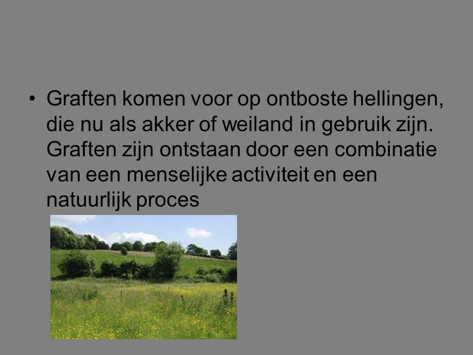 Graften komen voor op ontboste hellingen, die nu als akker of weiland in gebruik zijn.