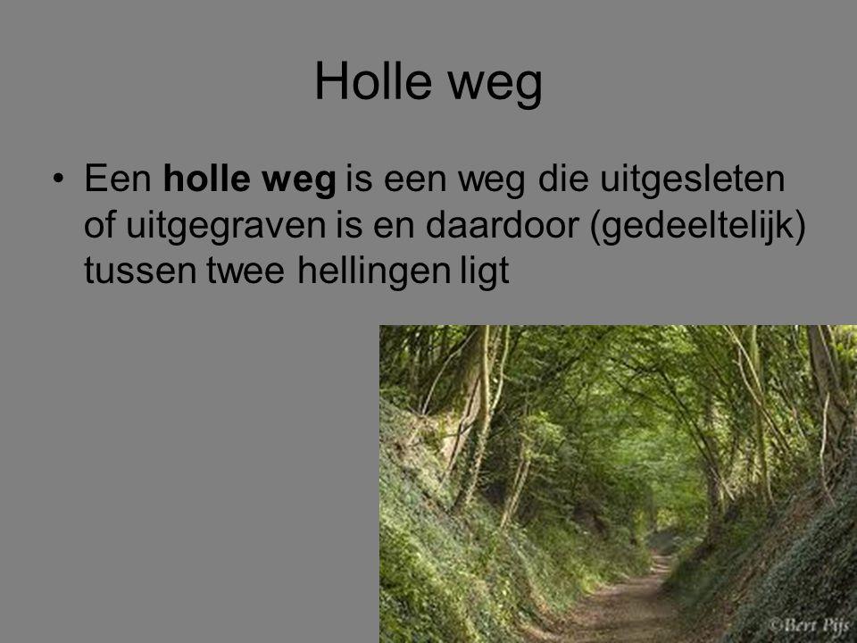 Holle weg Een holle weg is een weg die uitgesleten of uitgegraven is en daardoor (gedeeltelijk) tussen twee hellingen ligt.