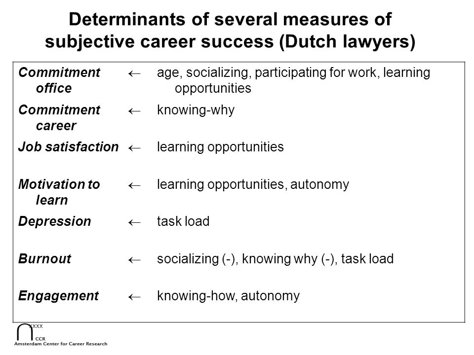 Determinants of several measures of subjective career success (Dutch lawyers)