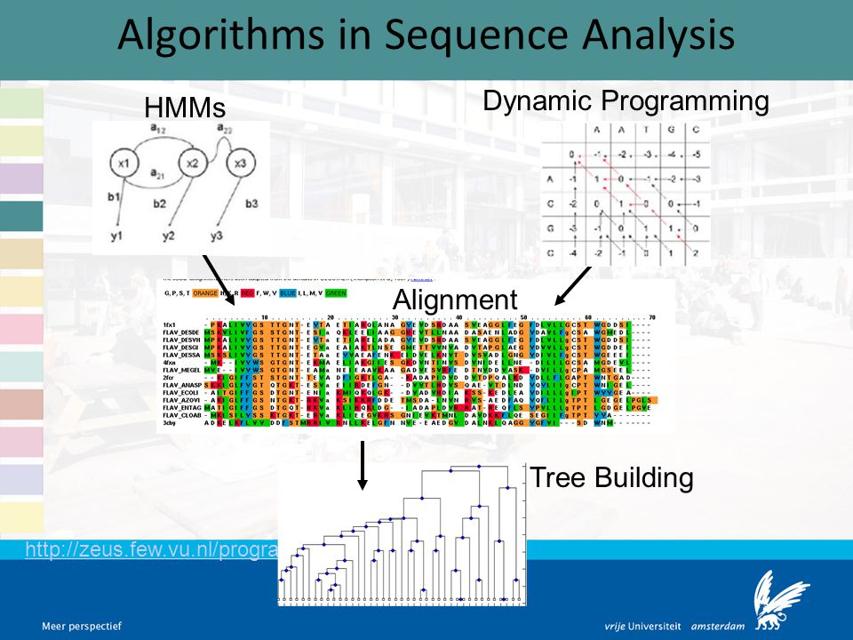 Algorithms in Sequence Analysis