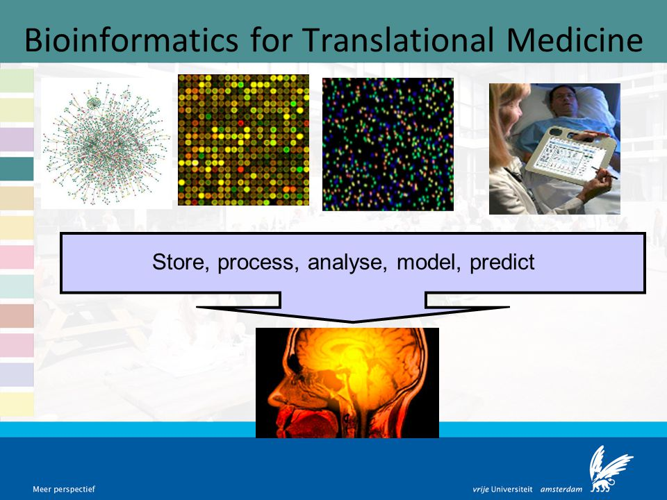 Bioinformatics for Translational Medicine