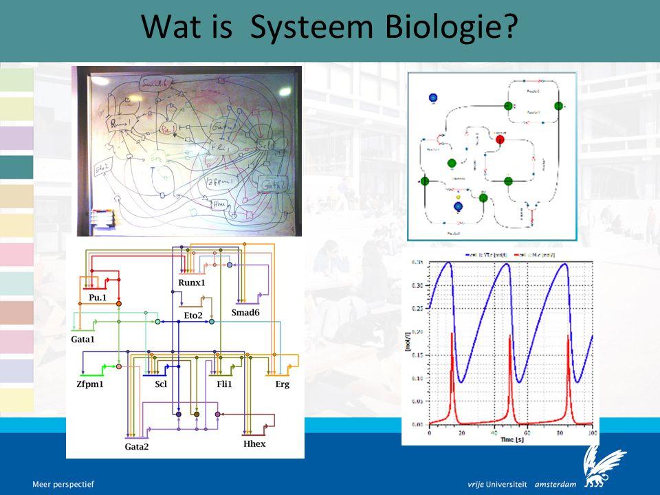 Wat is Systeem Biologie