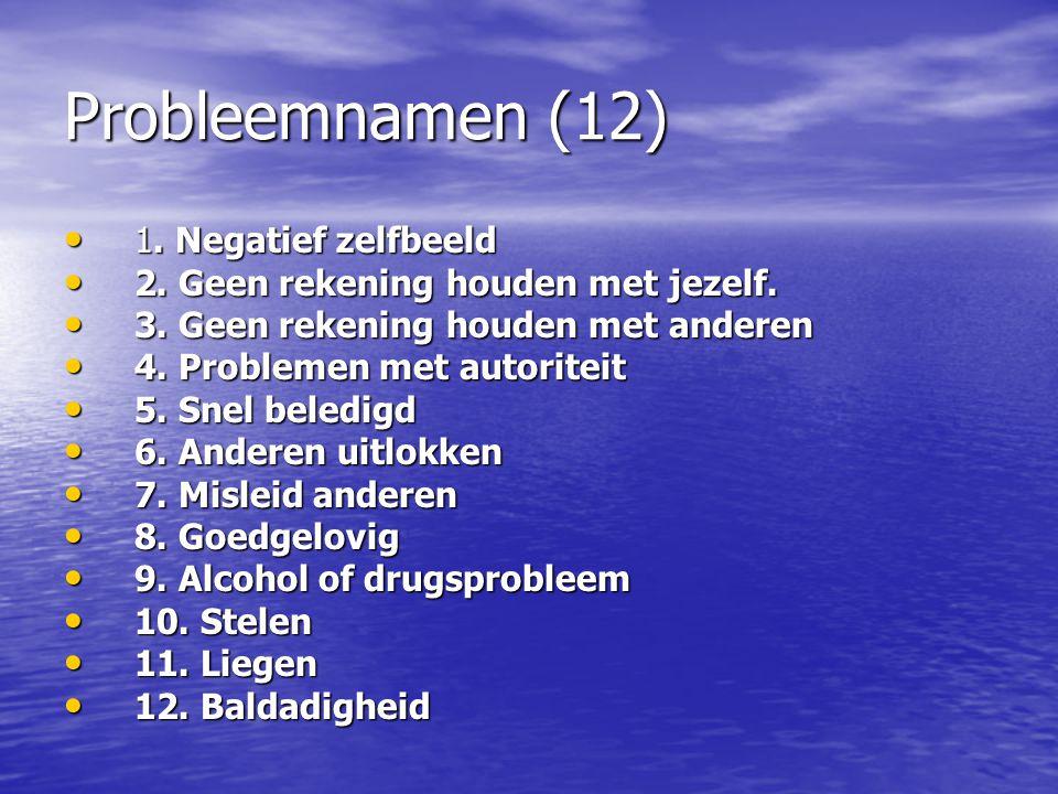 Probleemnamen (12) 1. Negatief zelfbeeld