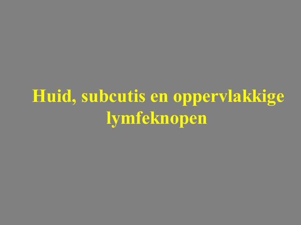 Huid, subcutis en oppervlakkige lymfeknopen